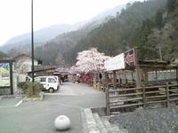 20110416_04