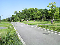 20120506_06